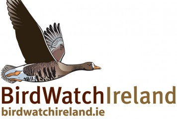 BirdWatch Ireland at WPY
