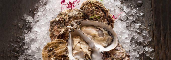 Oyster Offer down in ely bar & brasserie
